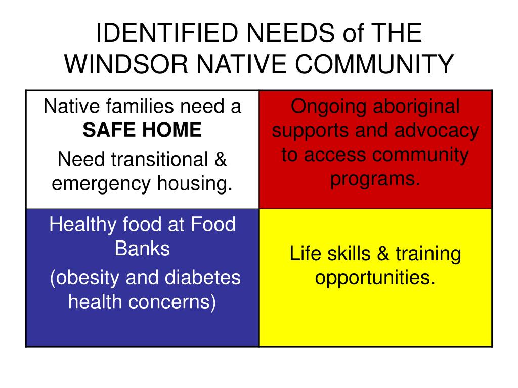 IDENTIFIED NEEDS of THE WINDSOR NATIVE COMMUNITY