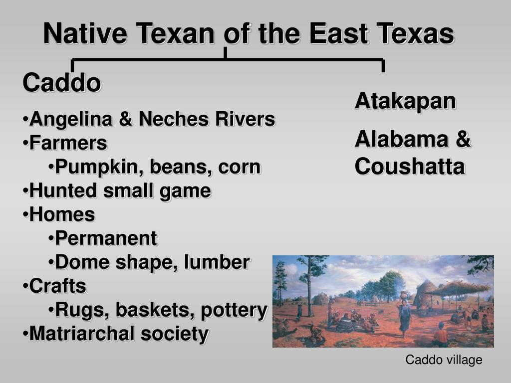 Native Texan of the East Texas