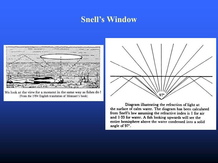 Snell's Window