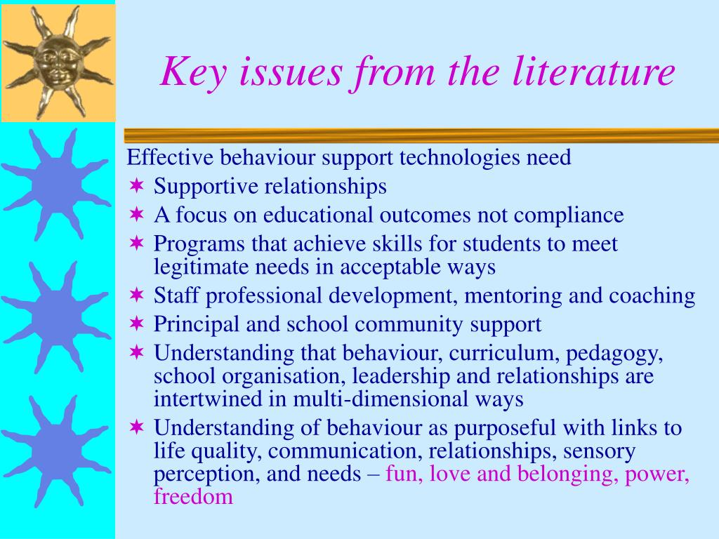 Key issues from the literature