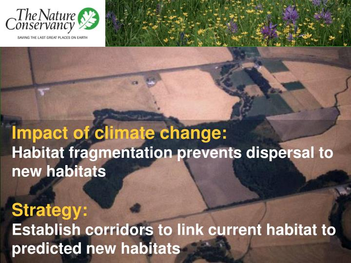 Impact of climate change: