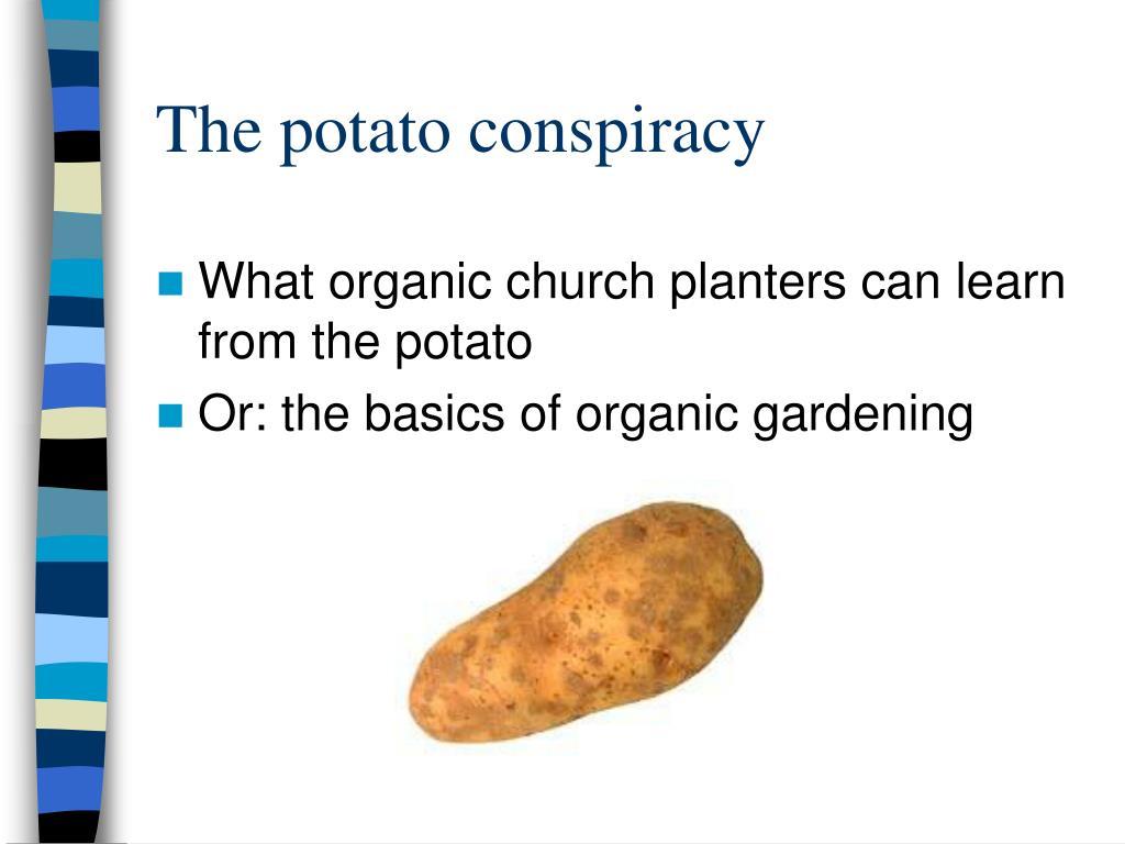 The potato conspiracy
