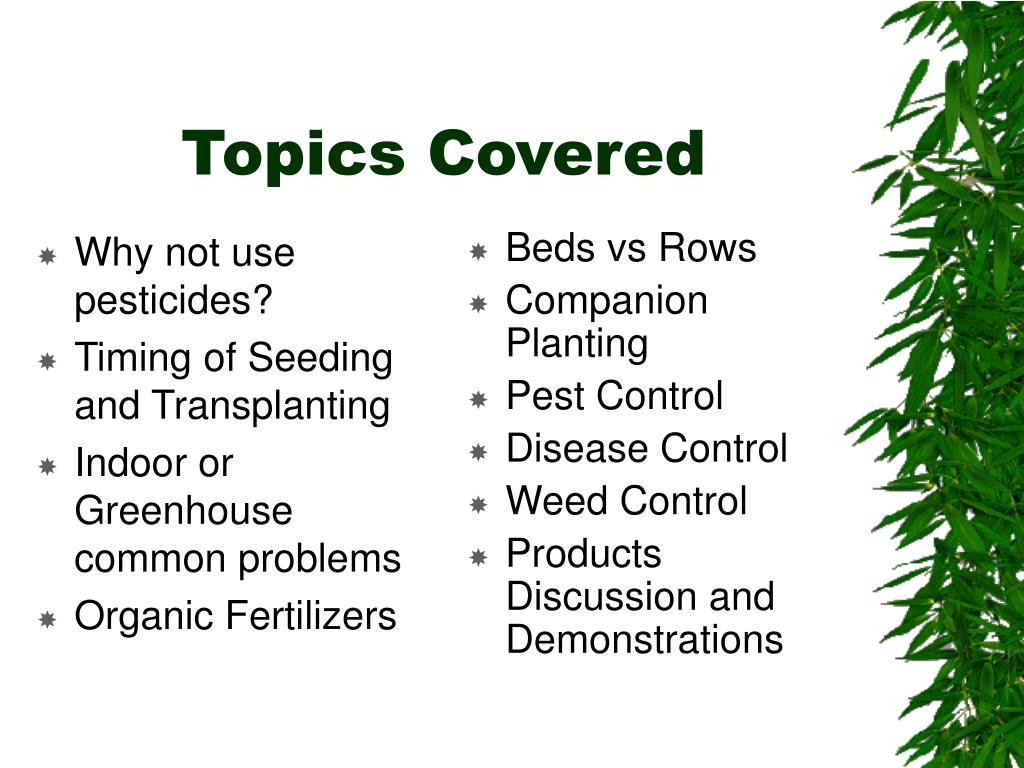 Why not use pesticides?