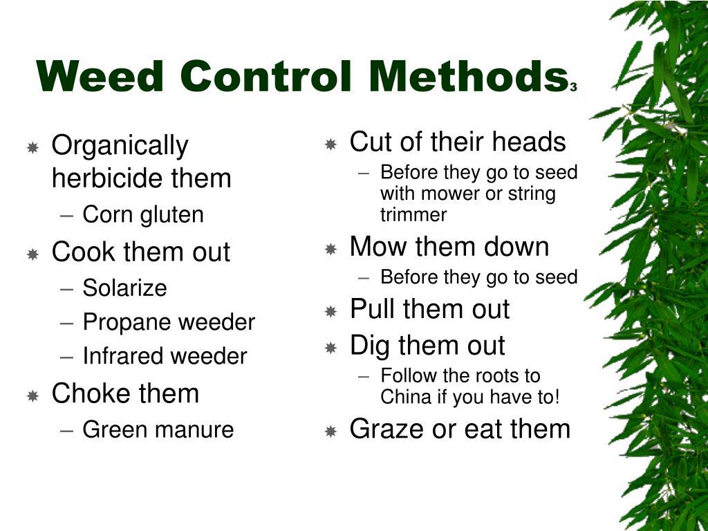 Organically herbicide them