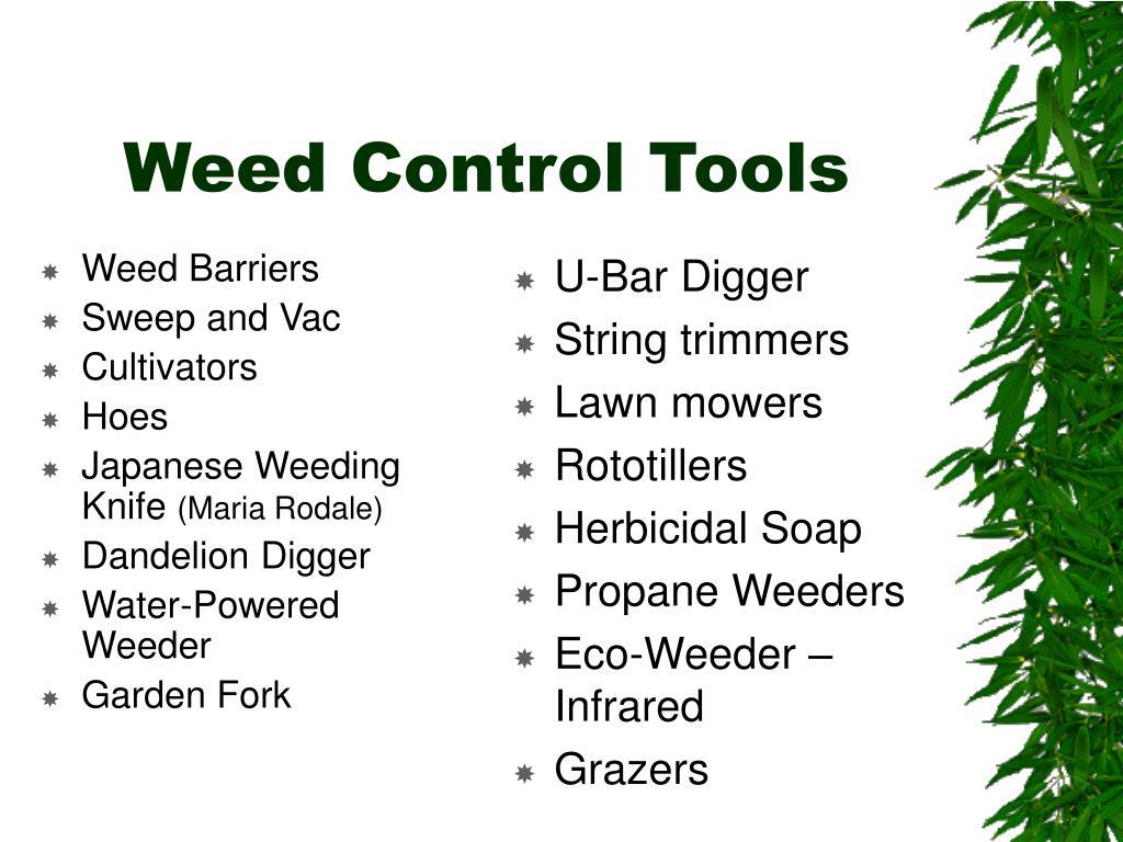 Weed Barriers