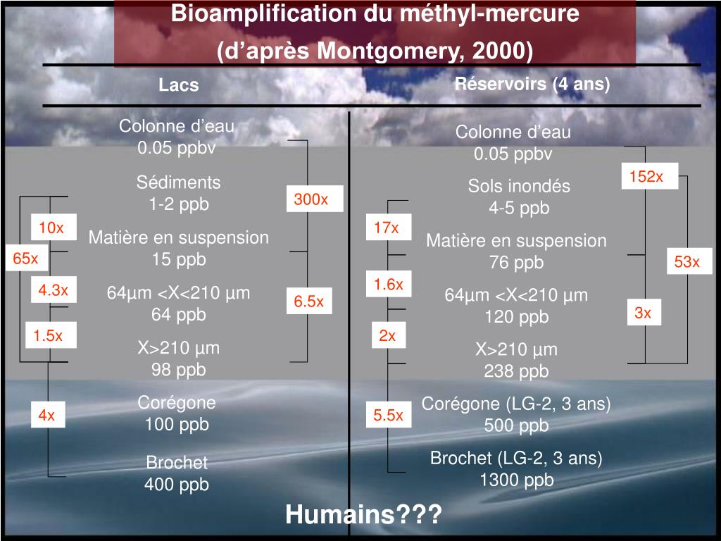 Bioamplification du méthyl-mercure