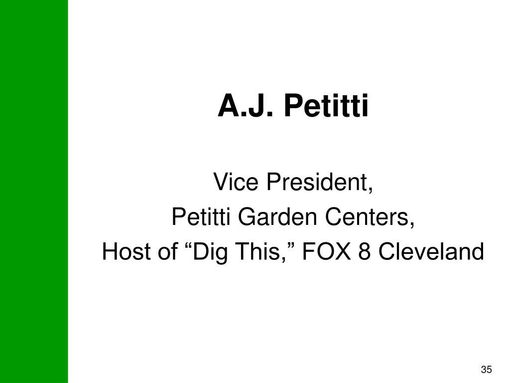 A.J. Petitti