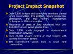 project impact snapshot