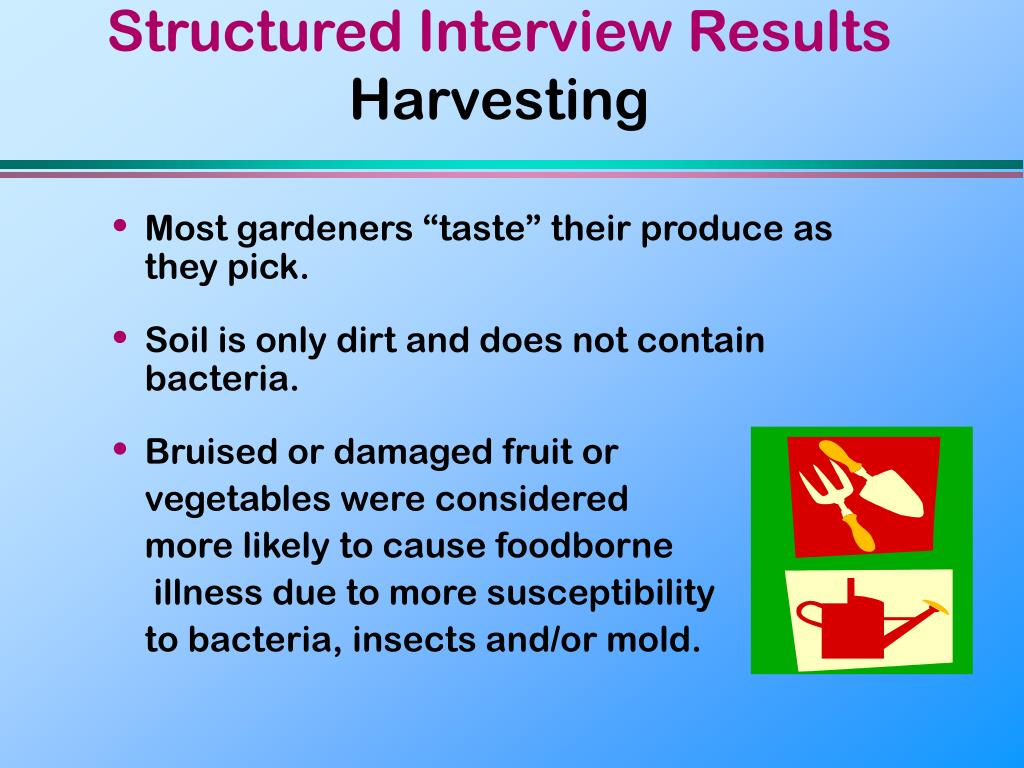 Structured Interview Results