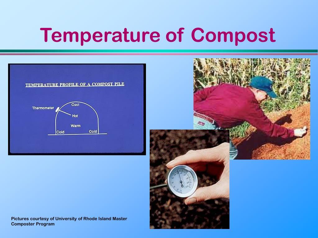 Temperature of Compost