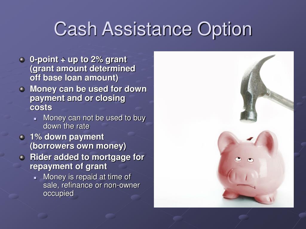 Cash Assistance Option