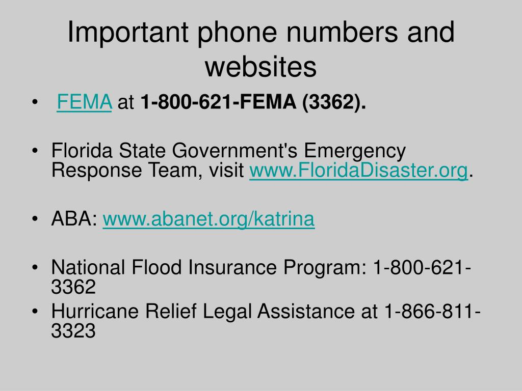 Important phone numbers and websites
