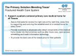 the primary solution mending texas fractured health care system46