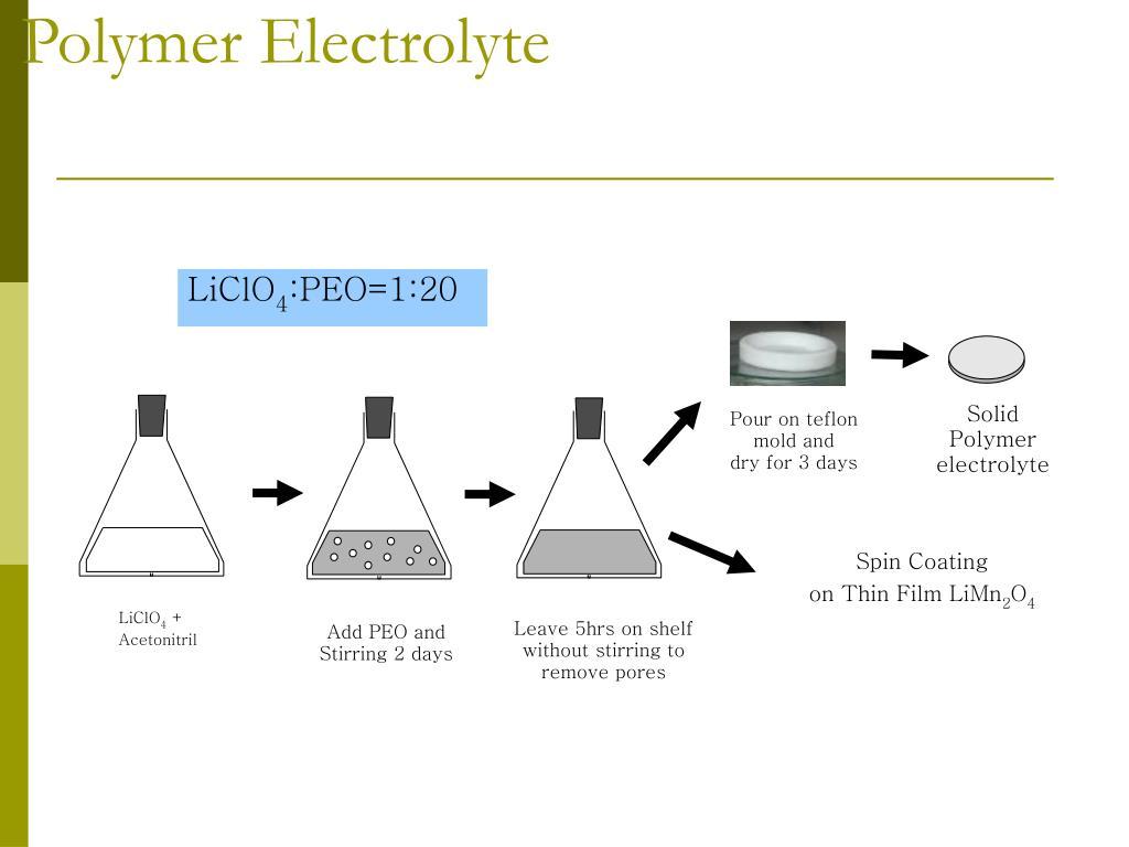 Polymer Electrolyte