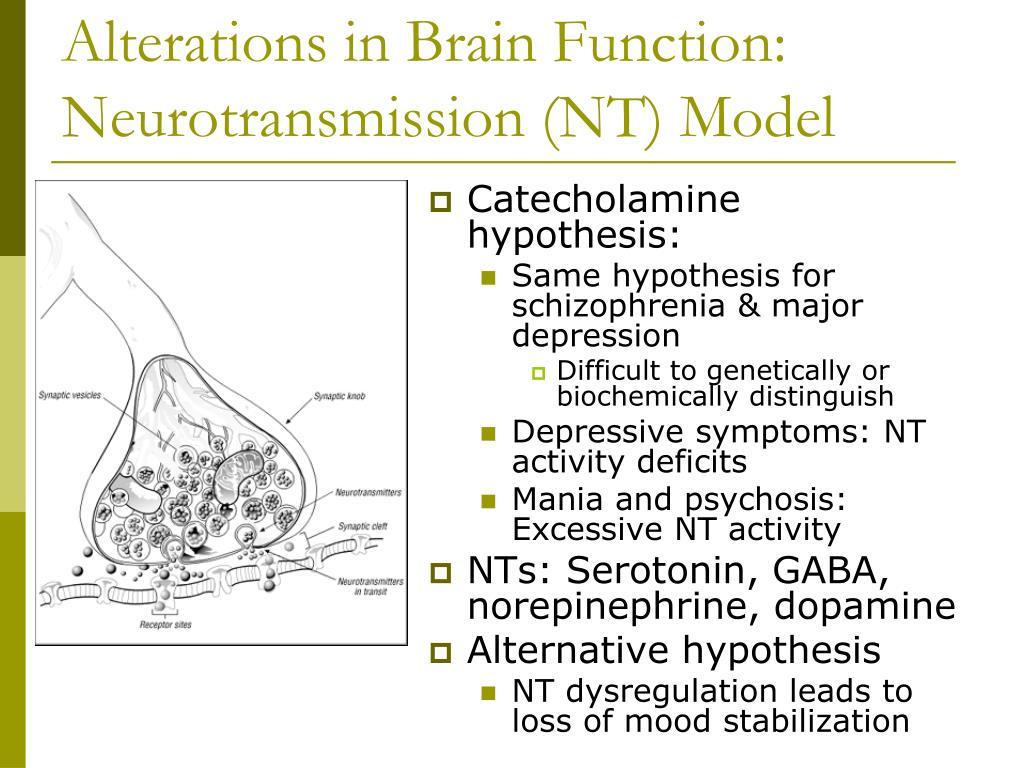 Alterations in Brain Function: Neurotransmission (NT) Model