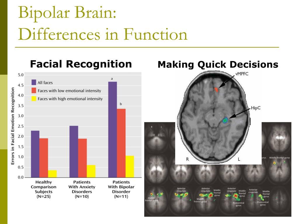 Bipolar Brain: