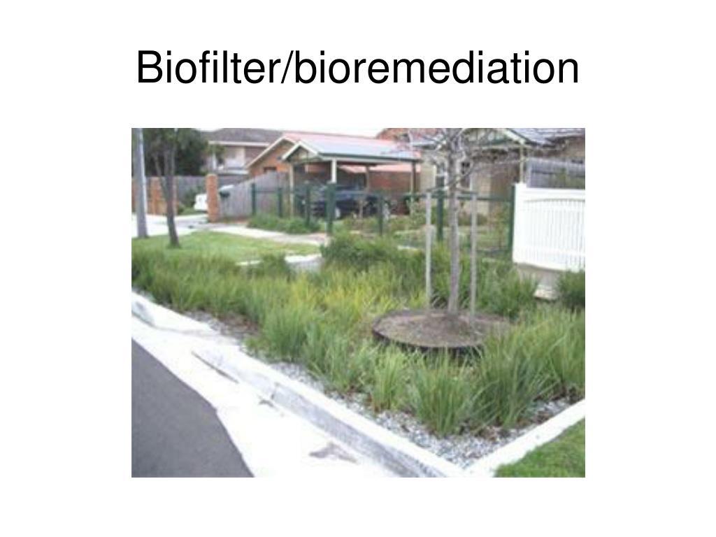 Biofilter/bioremediation