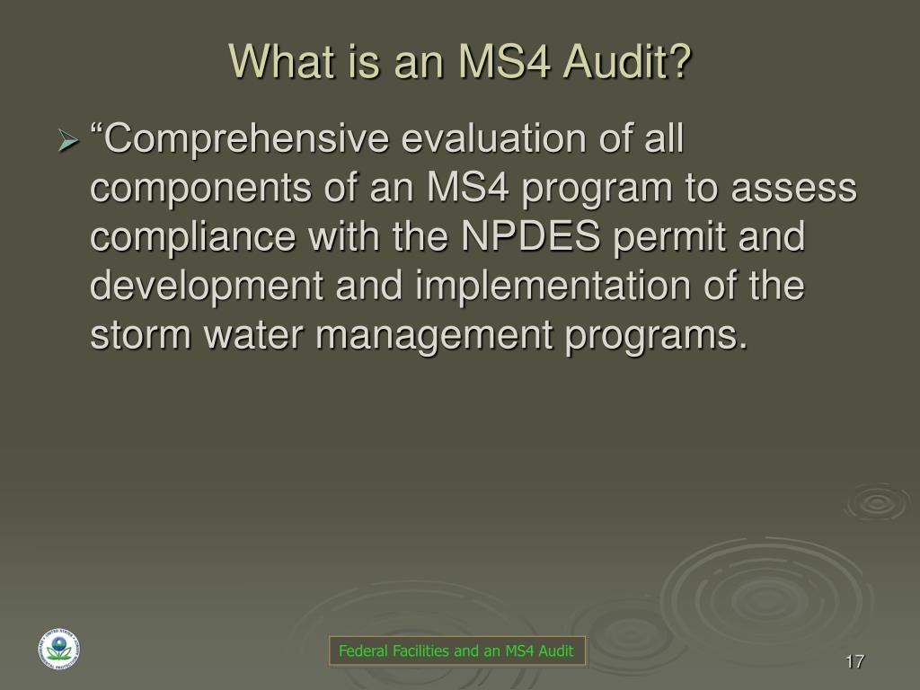What is an MS4 Audit?