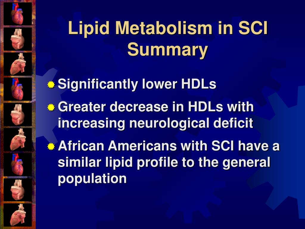 Lipid Metabolism in SCI Summary