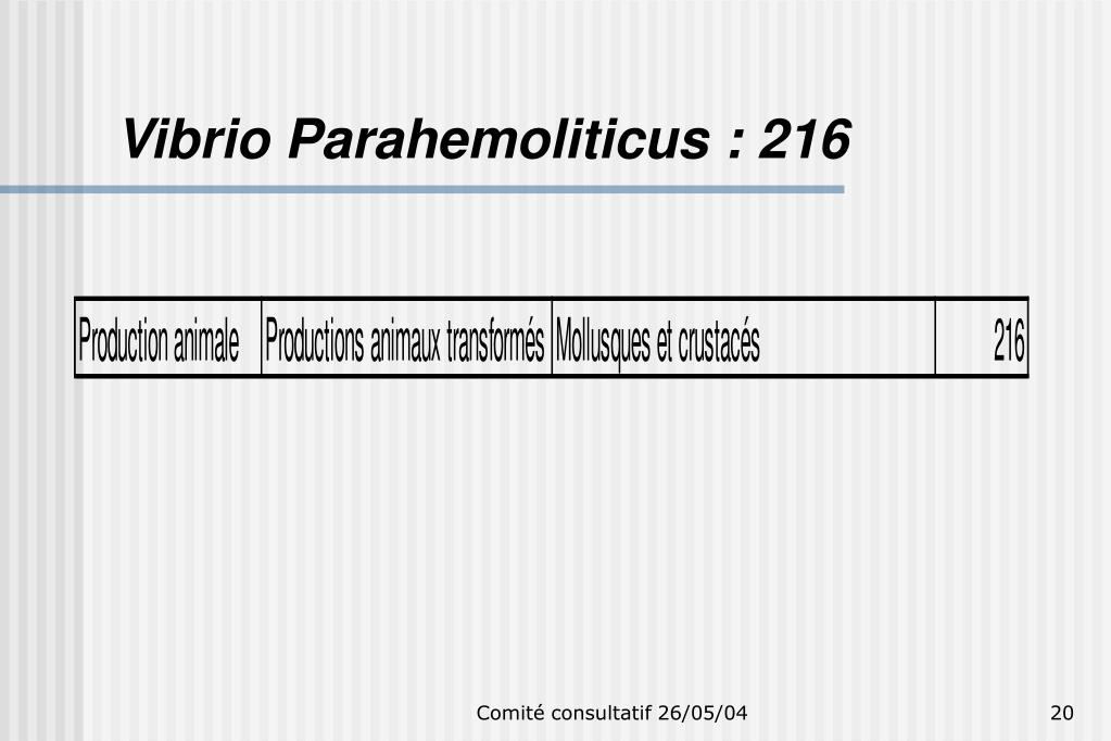Vibrio Parahemoliticus : 216
