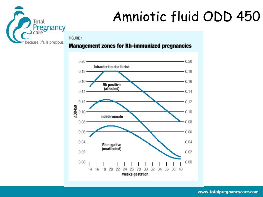 Amniotic fluid ODD 450