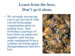 learn from the bees don t go it alone