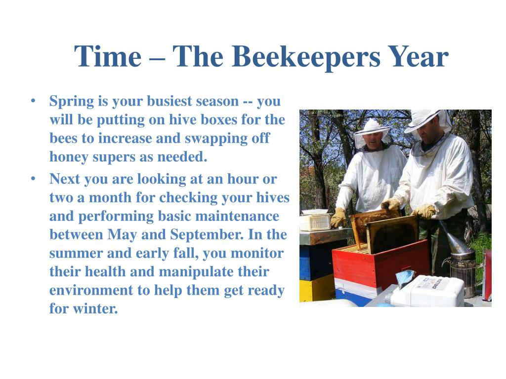 Time – The Beekeepers Year