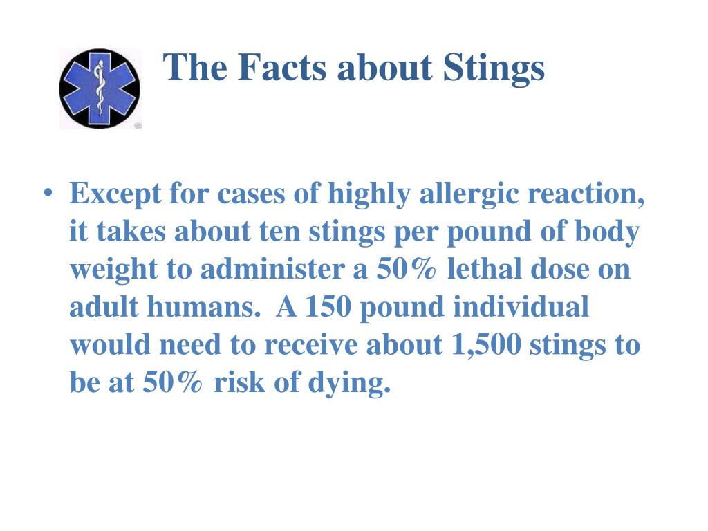 The Facts about Stings