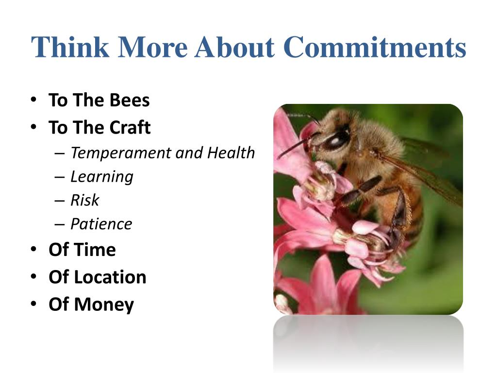 Think More About Commitments