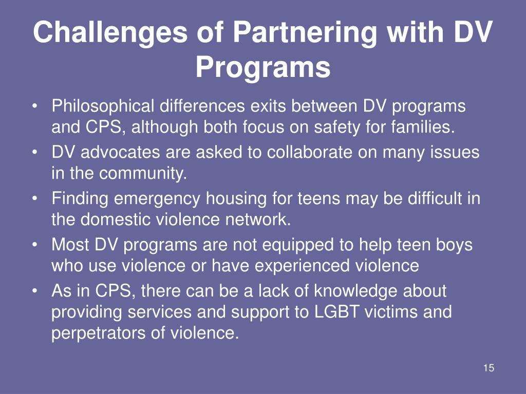 Challenges of Partnering with DV Programs