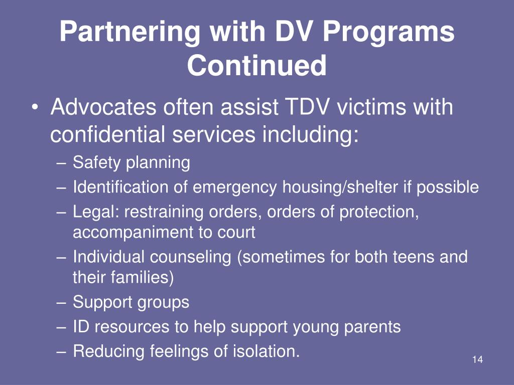 Partnering with DV Programs Continued