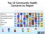 top 10 community health concerns by region