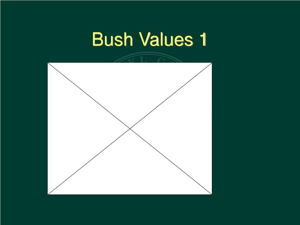 Bush Values 1
