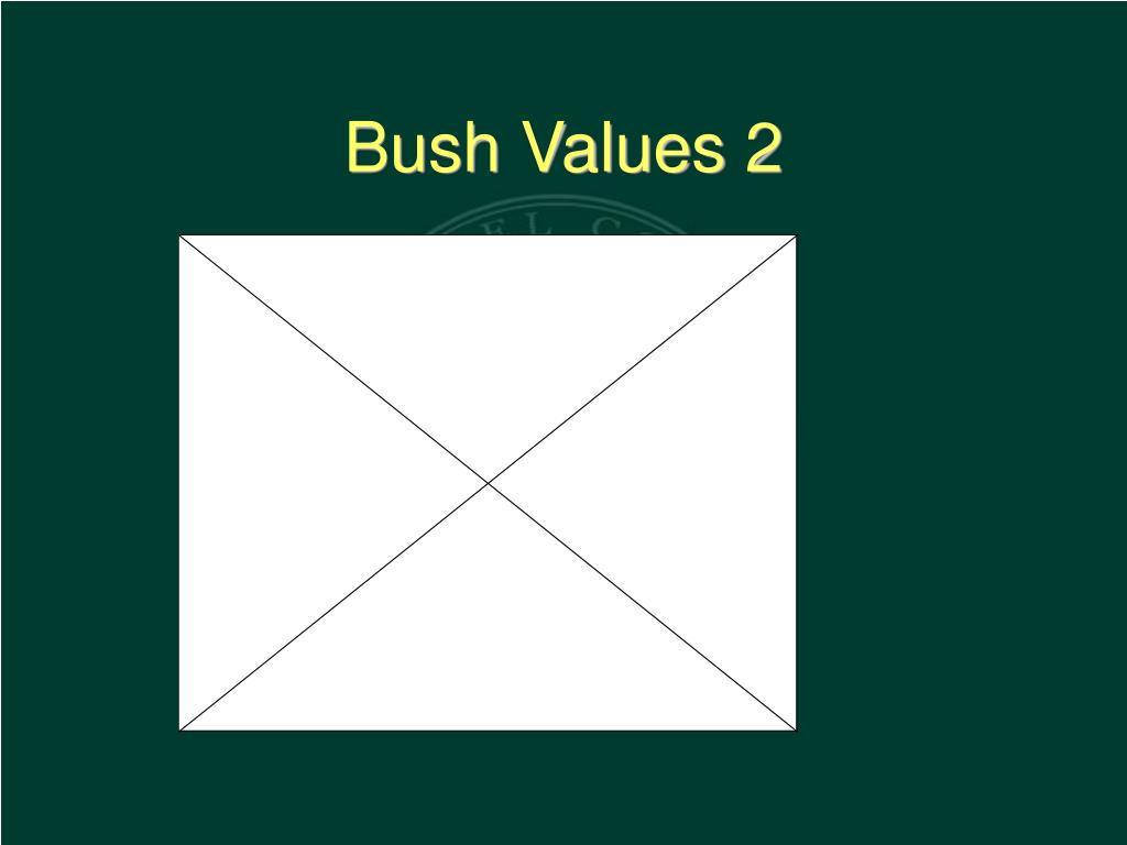 Bush Values 2