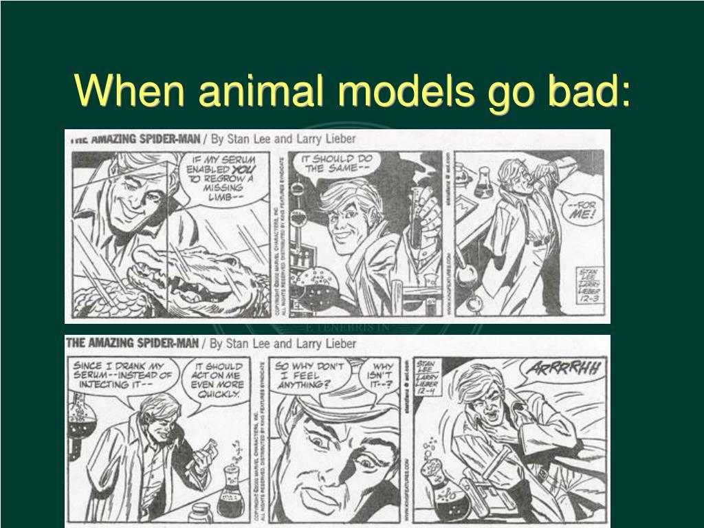 When animal models go bad:
