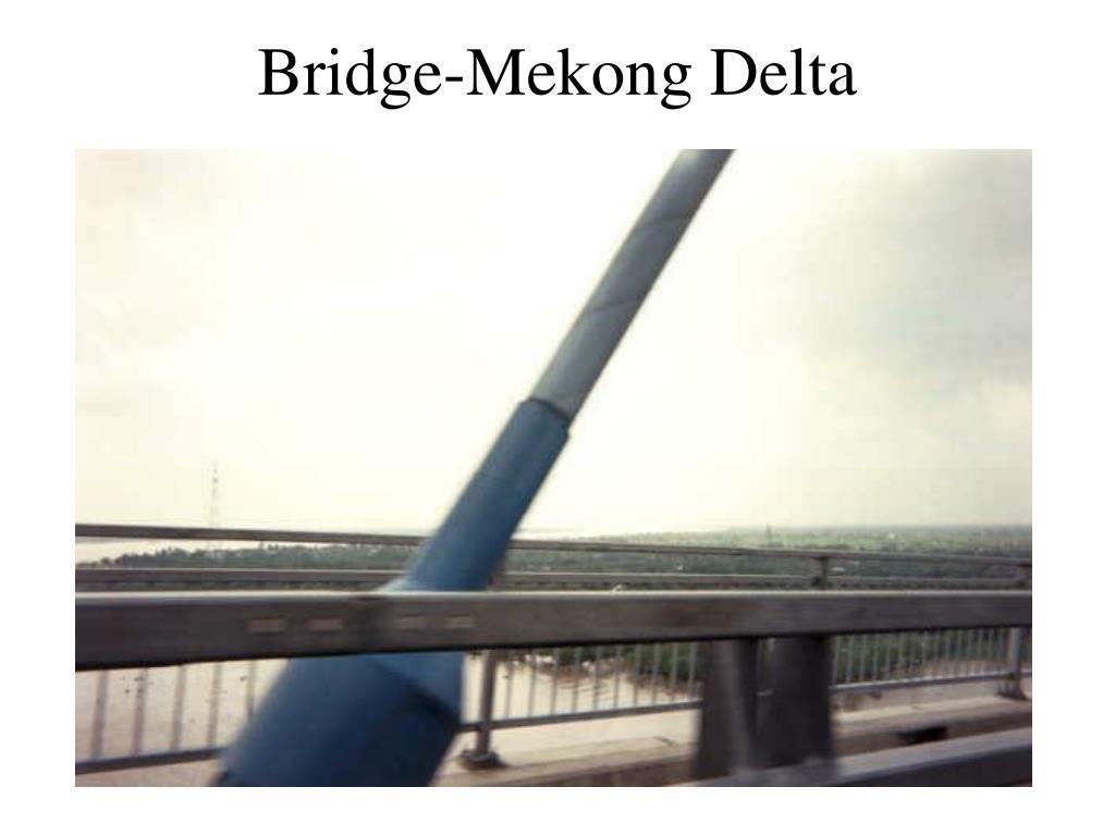 Bridge-Mekong Delta
