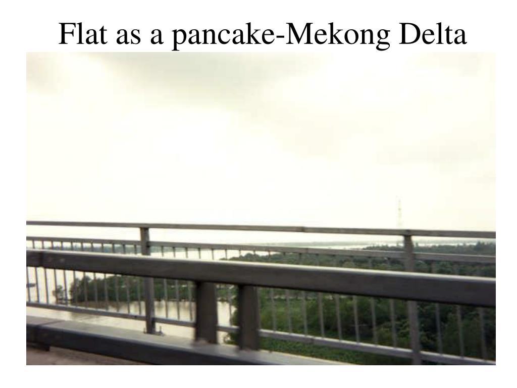 Flat as a pancake-Mekong Delta