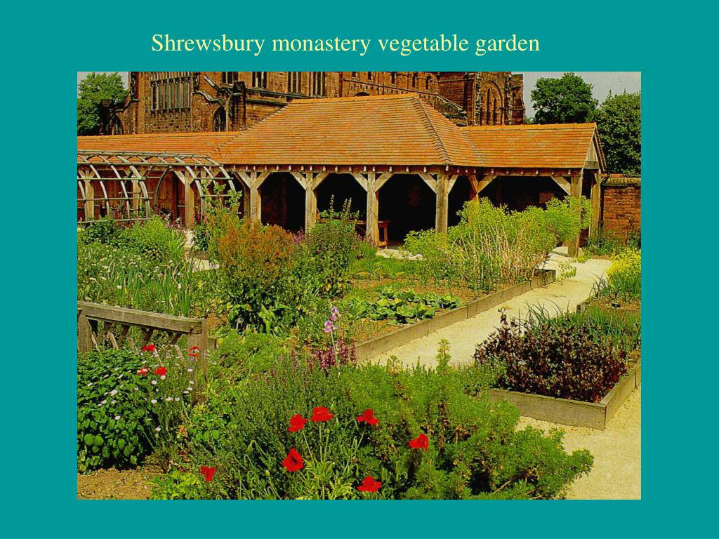 Shrewsbury monastery vegetable garden