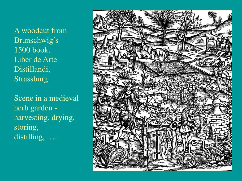A woodcut from