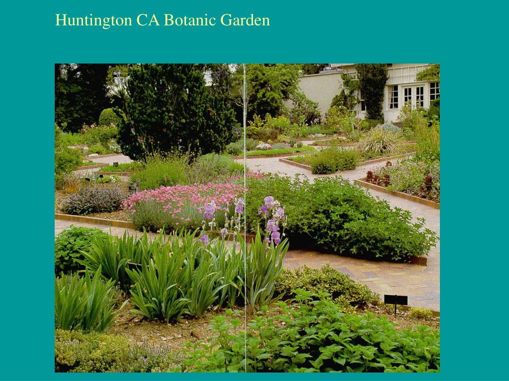Huntington CA Botanic Garden