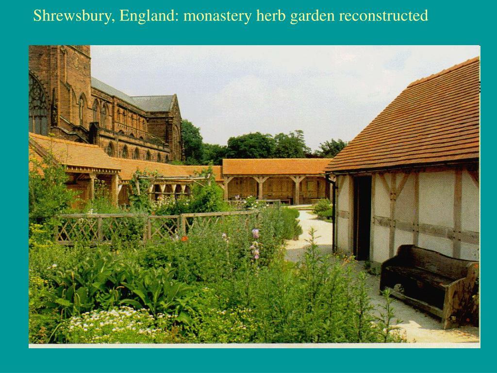 Shrewsbury, England: monastery herb garden reconstructed