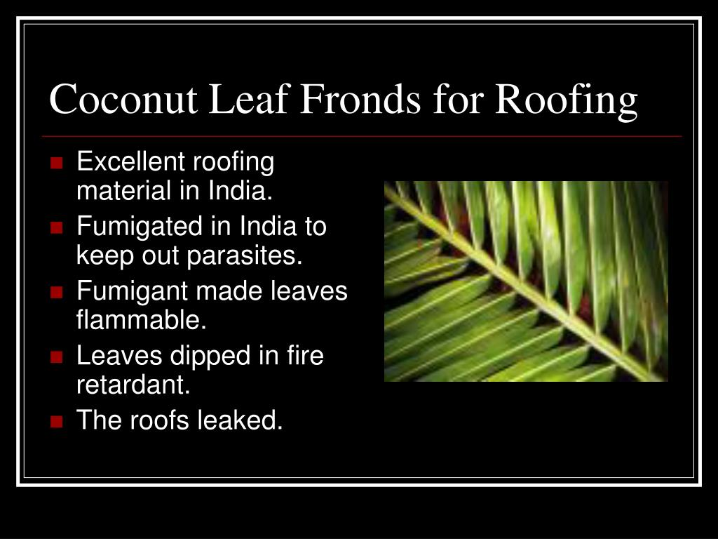 Coconut Leaf Fronds for Roofing