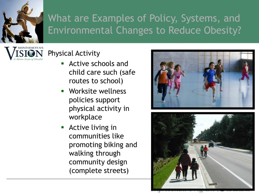 What are Examples of Policy, Systems, and Environmental Changes to Reduce Obesity?