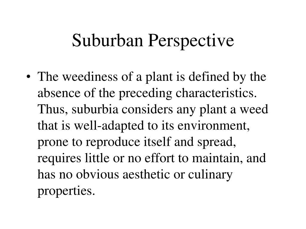 Suburban Perspective