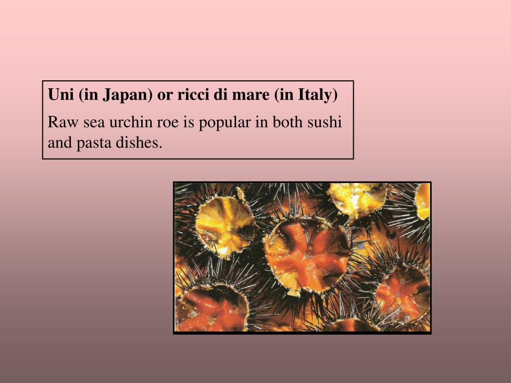 Uni (in Japan) or ricci di mare (in Italy)