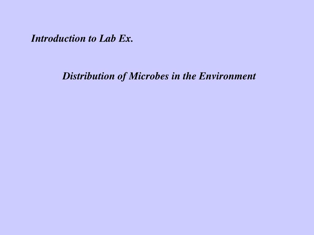 Introduction to Lab Ex.