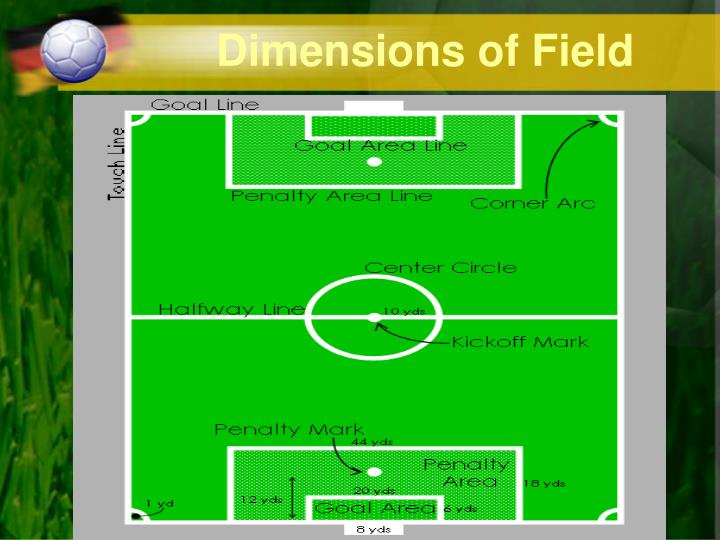 Dimensions of Field