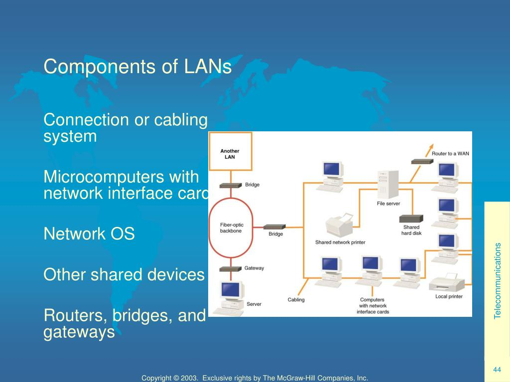 Components of LANs