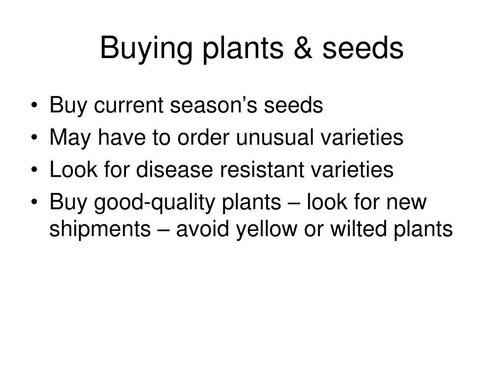 Buying plants & seeds