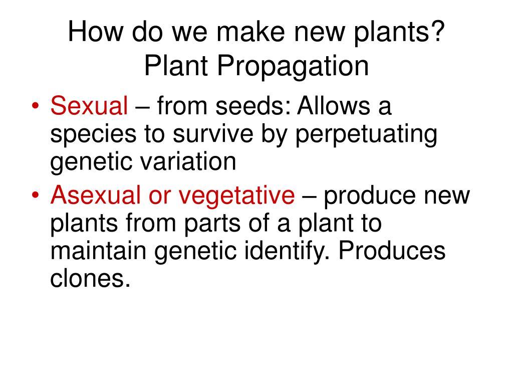 How do we make new plants? Plant Propagation